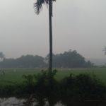 Kabut  Asap Semakin Tebal,Wabub Mengajak Seluruh Camat Melalui Kewenangannya  Menghimbau Setiap Nagari  Melakukan Sholat Istisqa