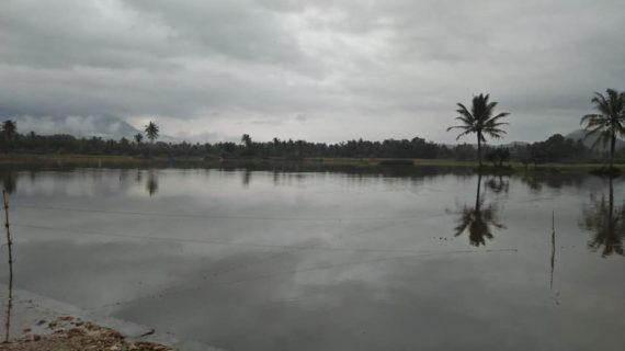 Hujan Tak Henti-Henti,4 Kecamatan Dilanda Banjir,BPBD Limapuluhkota  Dirikan  Tenda Untuk Masyarakat